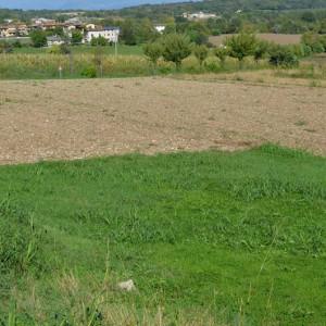 terreno edificabile in vendita a pozzolengo